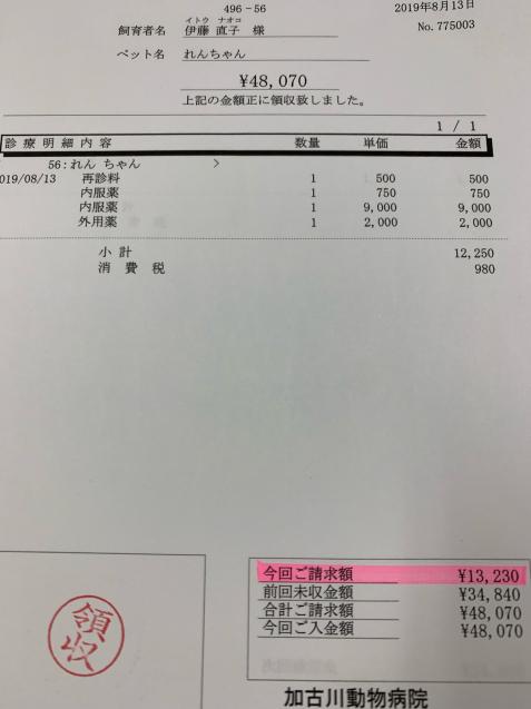 れんちゃん医療費の収支報告など_d0355333_14405713.jpg
