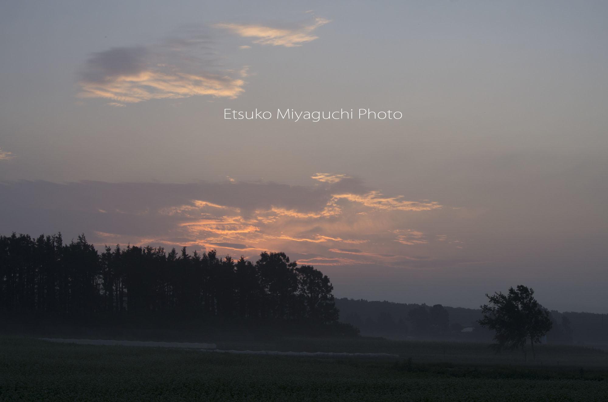 夜明けのひととき_f0152939_09081542.jpg