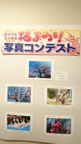 中川図書館へ♪_f0373339_17461540.jpg