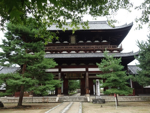 萬福寺で蝉の声を聴きながら普茶料理をいただきました_c0030645_14490391.jpg