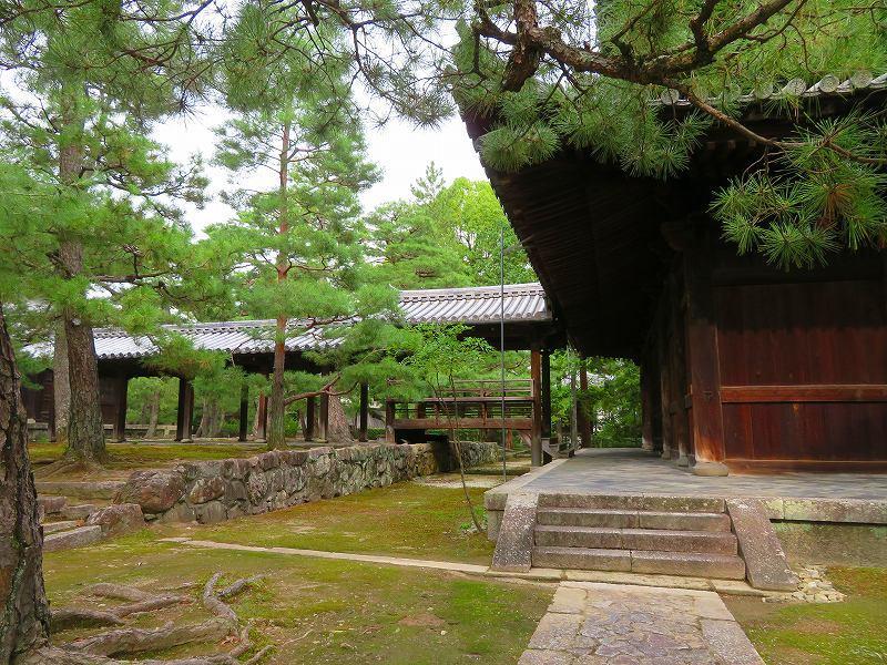 京都大徳寺の紹介20190822_e0237645_22395384.jpg