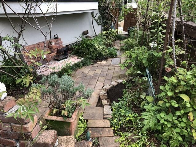 東南の庭「レンガの小道、花壇」ちょっぴり広げました_a0243064_09064626.jpg