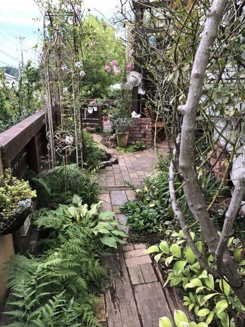 東南の庭「レンガの小道、花壇」ちょっぴり広げました_a0243064_09071922.jpg