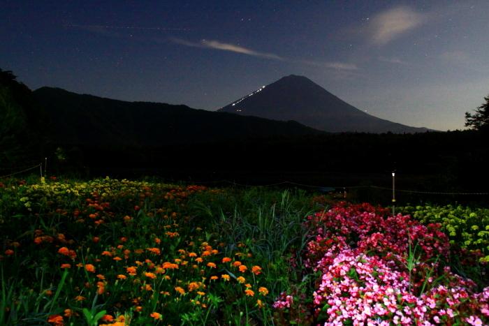令和元年8月の富士(20)西湖根場浜からの富士_e0344396_18240243.jpg