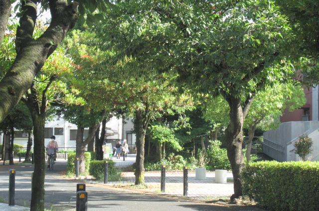 足立区の街散歩 407_a0214329_11223165.jpg