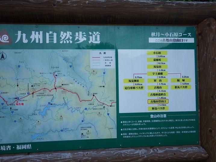 古処山・・・ナツエビネ探索_e0164643_13382006.jpg