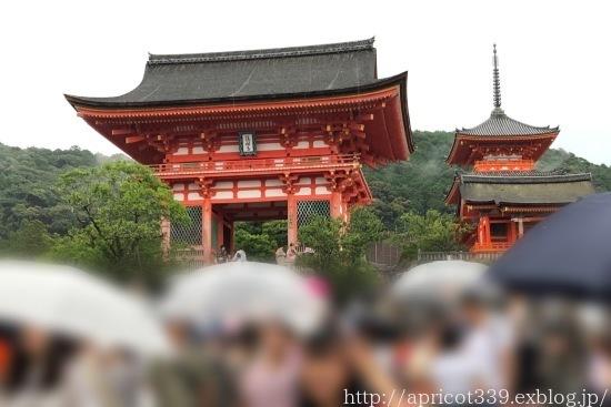 次女の修学旅行の下見で京都へ_c0293787_20594734.jpg