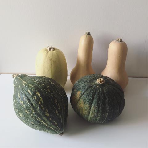 野菜ビピンパ_e0330790_08234847.jpg