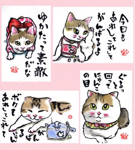 ジョウちゃんショコラちゃん たんたんいこ_f0375804_08560530.jpg