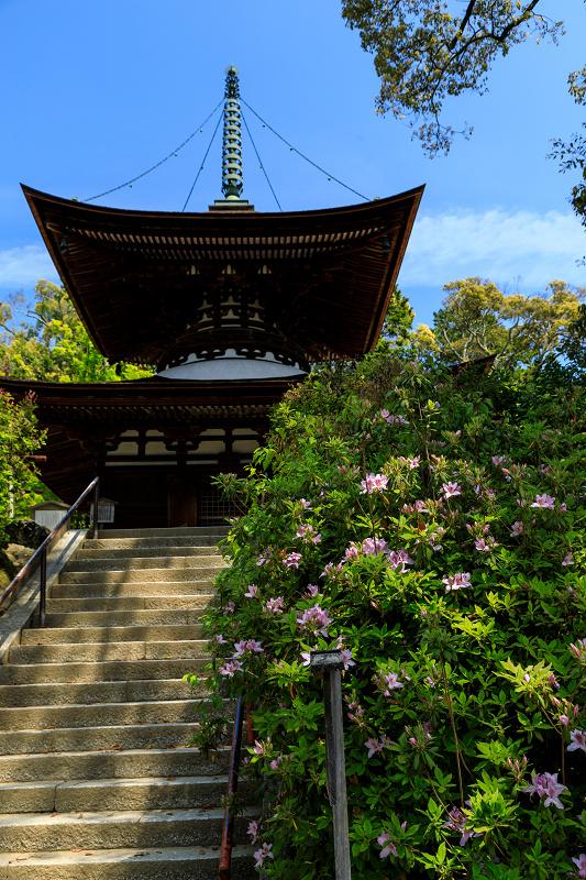 新緑と春の花々(石山寺)_f0155048_23174647.jpg