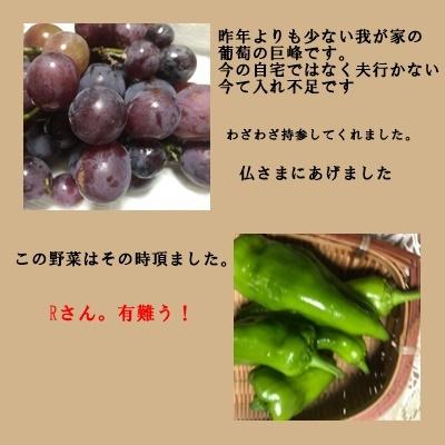 f0224350_18494760.jpg