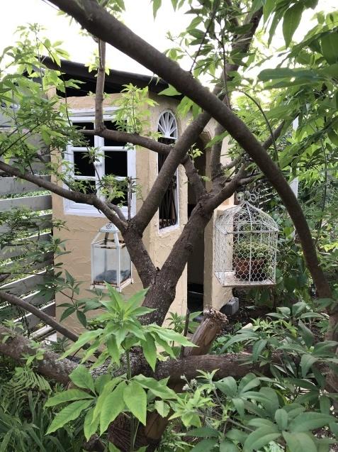 DIY【ミニハウスもどき】ウインドウフレーム取り付け、外壁塗り完了_a0243064_21583890.jpg