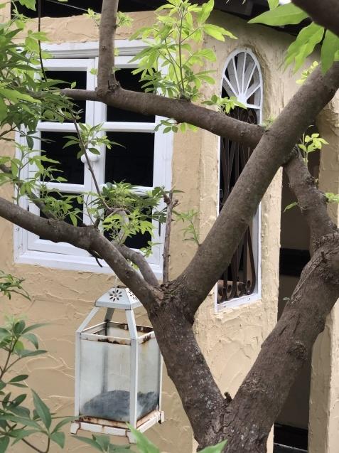 DIY【ミニハウスもどき】ウインドウフレーム取り付け、外壁塗り完了_a0243064_21592182.jpg