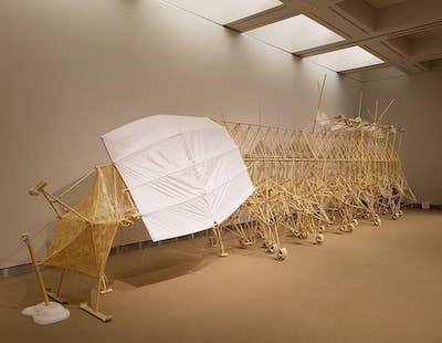 テオ・ヤンセン展に行ってきました<札幌芸術の森>_a0293265_15275229.jpg