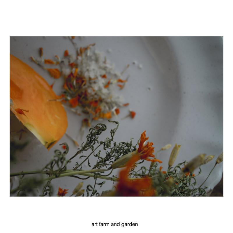 マリーゴールド・ソルト/art farm & garden_b0290469_10244546.jpg