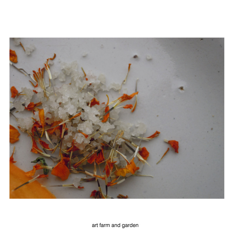 マリーゴールド・ソルト/art farm & garden_b0290469_10245909.jpg