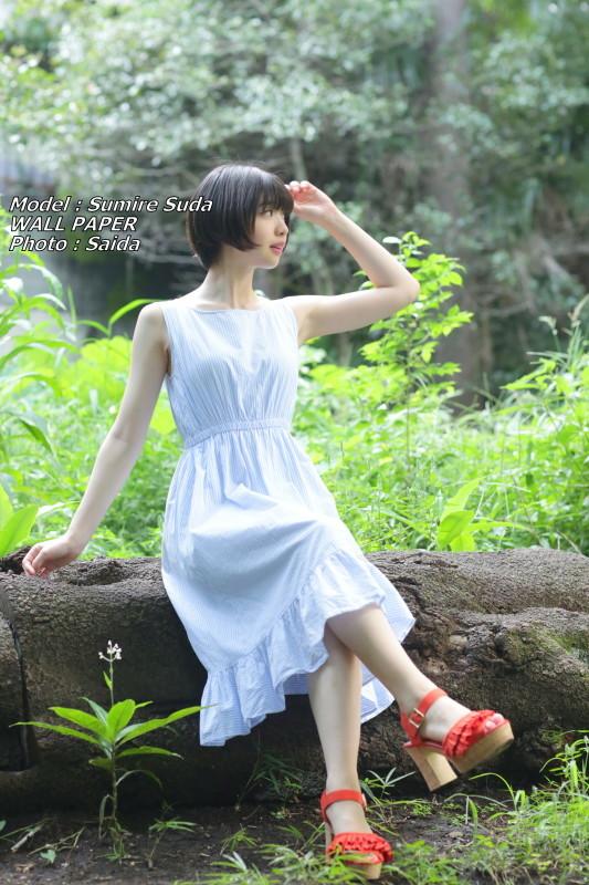 須田スミレ ~井の頭公園 / WALL PAPER_f0367980_23545076.jpg