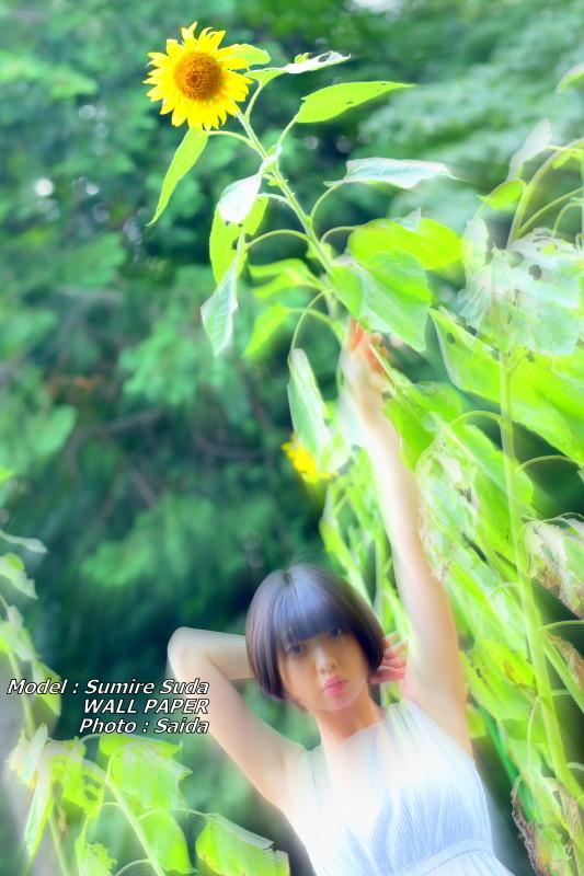 須田スミレ ~井の頭公園 / WALL PAPER_f0367980_23584275.jpg