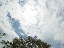 さらば夏の光_e0155085_20470858.jpg