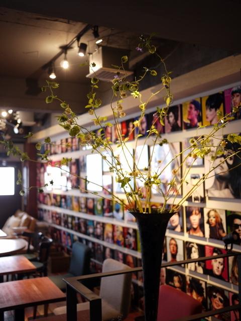 今週のWORLD BOOK CAFEさんは「千成ホウズキ」。2019/08/25。_b0171193_17125339.jpg