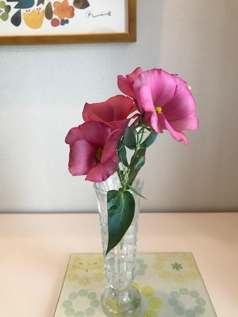 夏に飾るお花_f0204295_20262300.jpg