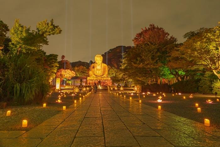 かまくら長谷の灯かり2019 鎌倉大仏殿高徳院・光則寺・長谷寺のライトアップ_b0145398_21570833.jpg