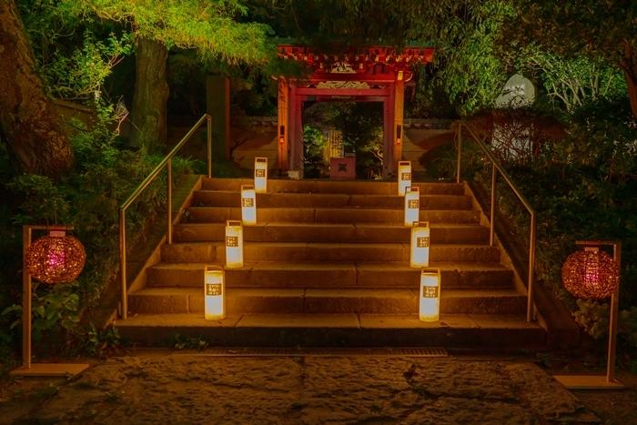 かまくら長谷の灯かり2019 鎌倉大仏殿高徳院・光則寺・長谷寺のライトアップ_b0145398_22012144.jpg