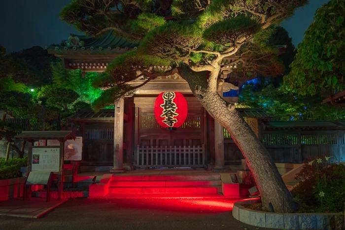 かまくら長谷の灯かり2019 鎌倉大仏殿高徳院・光則寺・長谷寺のライトアップ_b0145398_22065538.jpg