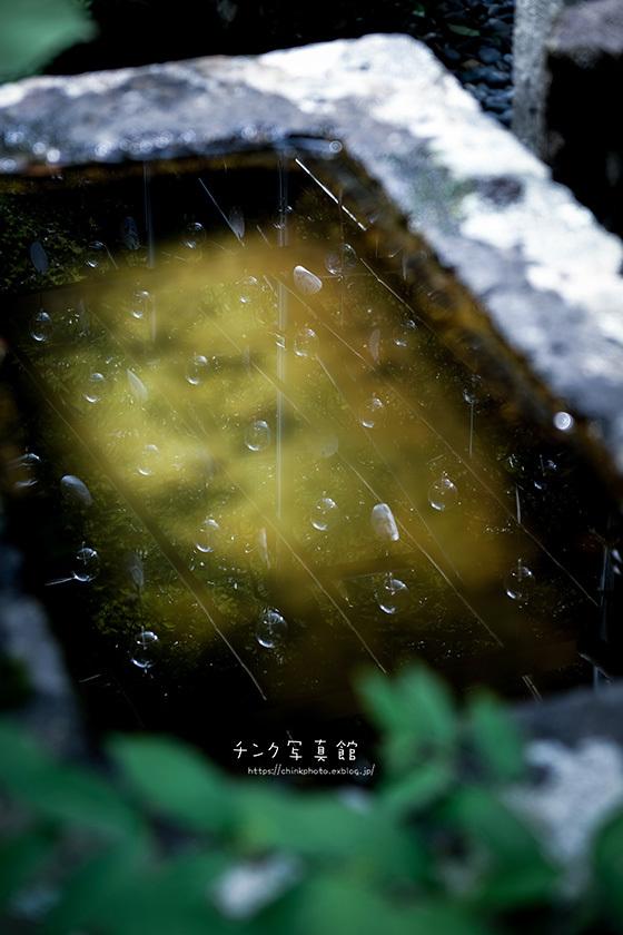 光明寺-2_e0254298_18132981.jpg