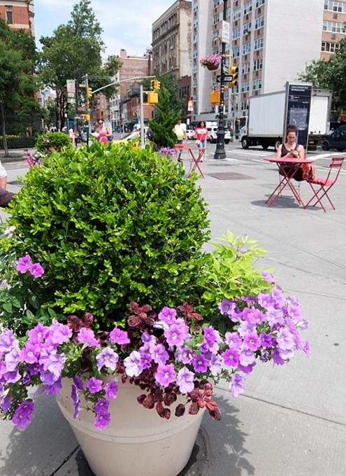 夏のニューヨーク特集、グリニッジ・ビレッジのお散歩にもどります_b0007805_02431881.jpg