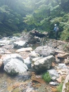 川浦散策沢歩き_c0359615_22401423.jpg