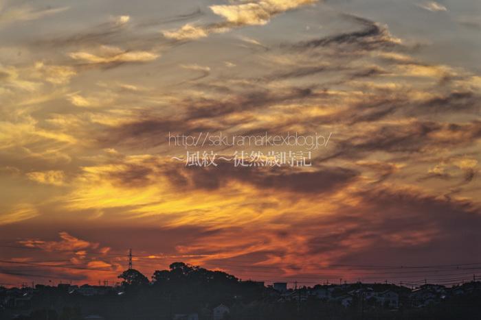 晩夏の夕焼け。_f0235723_20045846.jpg