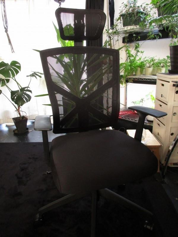 日常「椅子買った」_b0362459_17401614.jpg