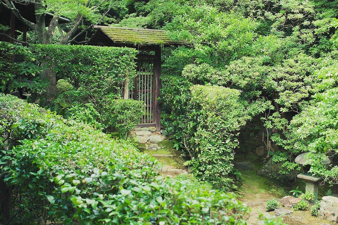 妙心寺 桂春院(その2)思惟の庭と真如の庭_c0112559_08153584.jpg