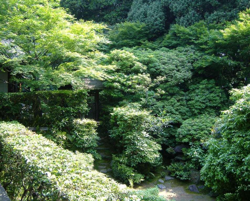 妙心寺 桂春院(その2)思惟の庭と真如の庭_c0112559_08155041.jpg
