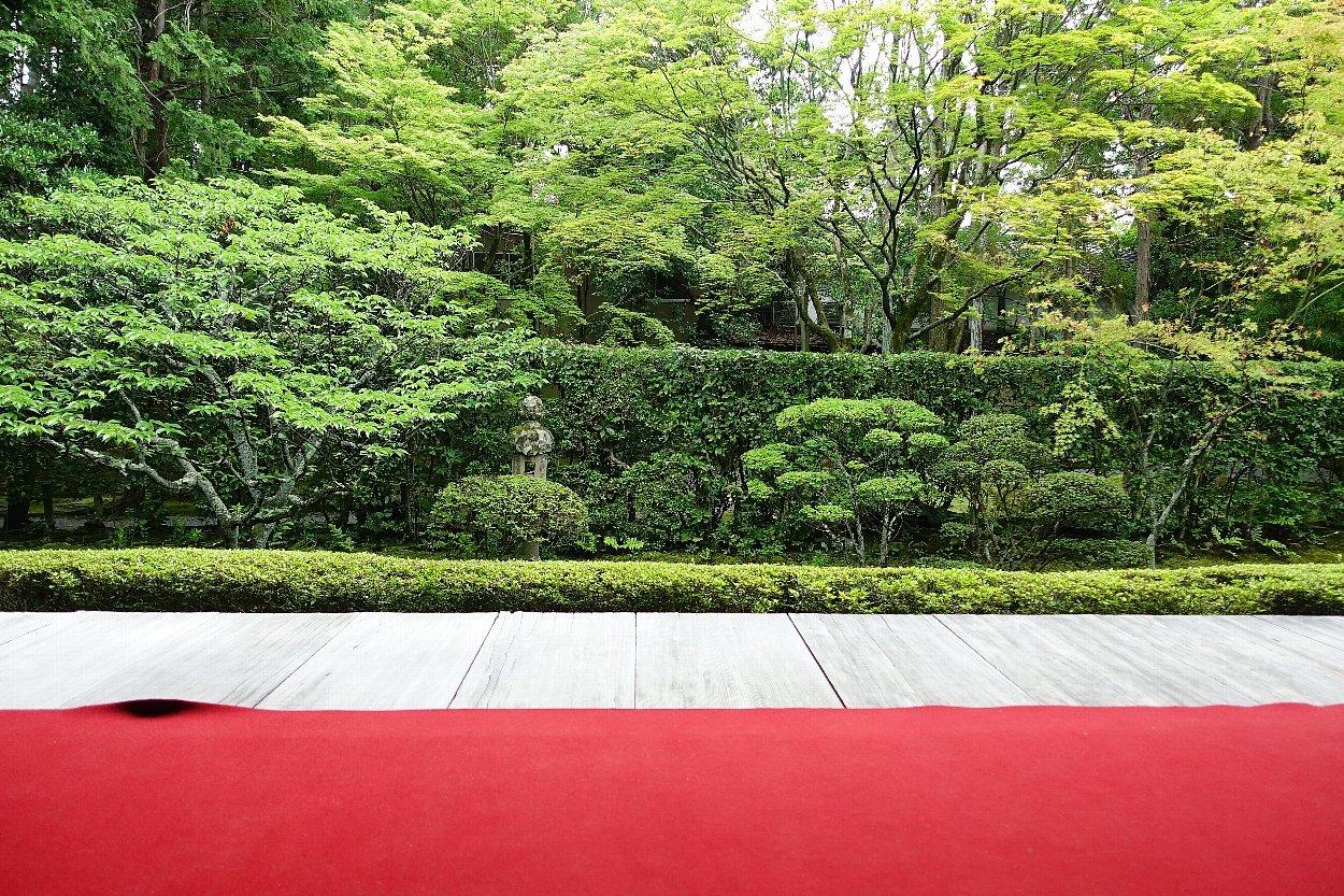 妙心寺 桂春院(その2)思惟の庭と真如の庭_c0112559_08180883.jpg