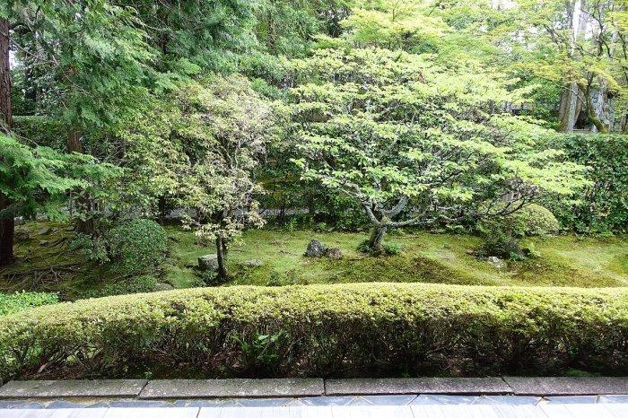 妙心寺 桂春院(その2)思惟の庭と真如の庭_c0112559_08184335.jpg