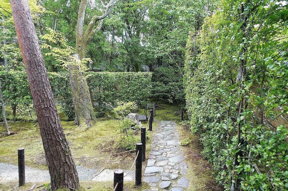妙心寺 桂春院(その2)思惟の庭と真如の庭_c0112559_08193625.jpg