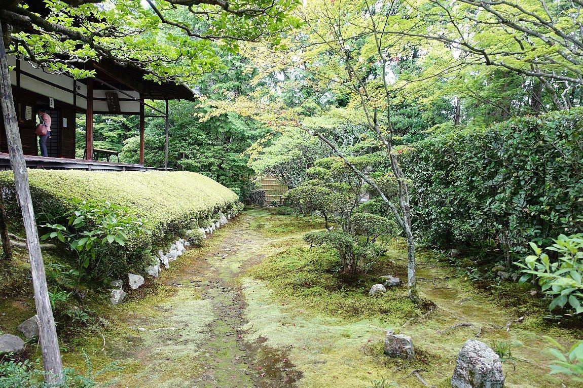 妙心寺 桂春院(その2)思惟の庭と真如の庭_c0112559_08202790.jpg