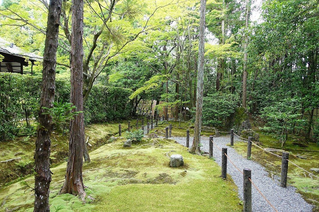 妙心寺 桂春院(その2)思惟の庭と真如の庭_c0112559_08211912.jpg