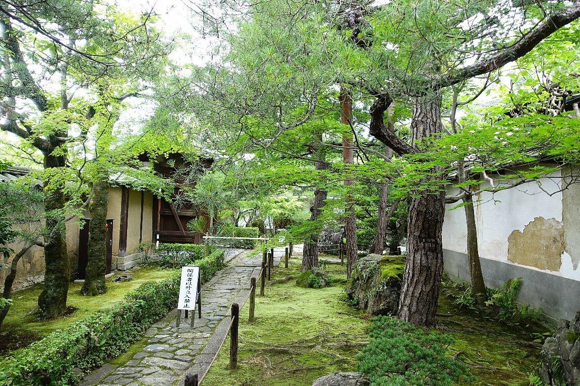 妙心寺 桂春院(その2)思惟の庭と真如の庭_c0112559_08225746.jpg