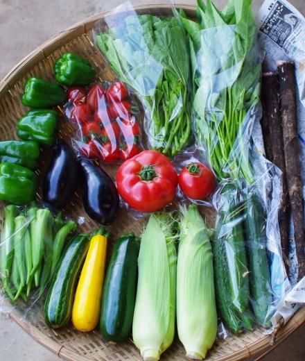 今週の野菜セット(8/27~8/31着)_c0110869_13584130.jpg