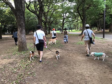 犬友に会う_b0035072_15300373.jpg