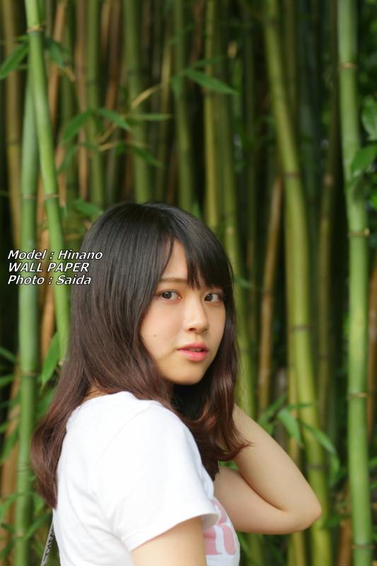 ひなの ~井の頭公園 / WALL PAPER_f0367980_00173351.jpg