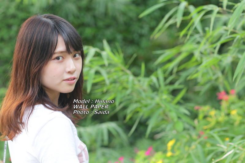 ひなの ~井の頭公園 / WALL PAPER_f0367980_00181331.jpg