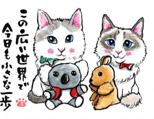 カルちゃんきららちゃん ハナモモちゃん_f0375804_20251107.jpg