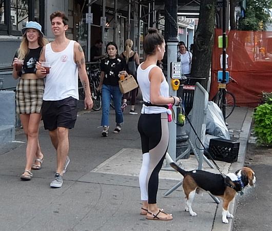 夏のニューヨーク、グリニッジ・ビレッジの普通の街角風景_b0007805_02121263.jpg
