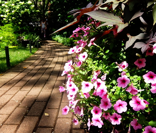 NYグリニッジ・ビレッジの隠れ家的ガーデン、Jefferson Market Garden_b0007805_02413317.jpg