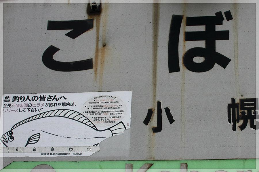 そろそろ小幌(その2)_e0235910_13181527.jpg