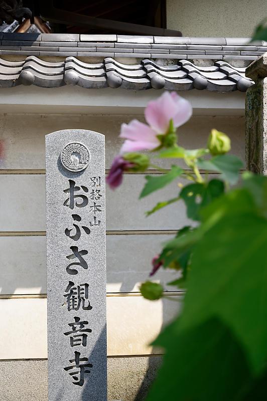 風鈴祭り@おふさ観音寺_f0032011_18275943.jpg